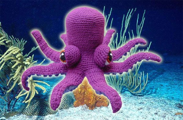 Otto The Octopus
